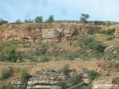 Comarca Maestrazgo-Teruel;membranas impermeables tejo árbol tipos de mochilas para mujer sierra de